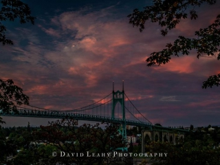 Photo Credit: David Leahy Photography Facebook Page: https://www.facebook.com/DavidLeahyPhotography