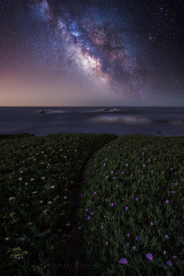 Photo Credit: Michael Shainblum Photography Facebook Page: https://www.facebook.com/shainblumphoto