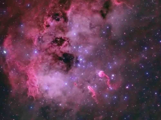 To IC410 είναι ένα νεφέλωμα εκπομπής περίπου 12.000 έτη φωτός από την Γη στον αστερισμό του Ηνιόχου. Κοντά στο κέντρο της νεφελώδης περιοχής είναι η το σμήνος αστέρων NGC 1893 και ακριβώς στην κάτω δεξιά γωνία του σμήνους αυτού είναι δύο δομές που μοιάζουν με γυρίνους. Αυτές οι δομές είναι απομεινάρια υδρογόνου και σκόνης από το σχηματισμό του αστρικού σμήνους και οι «ουρές» είναι από το αστρικό άνεμο που προέρχεται από τα αστέρια του NGC 1893. Photo Credit: Steven Coates