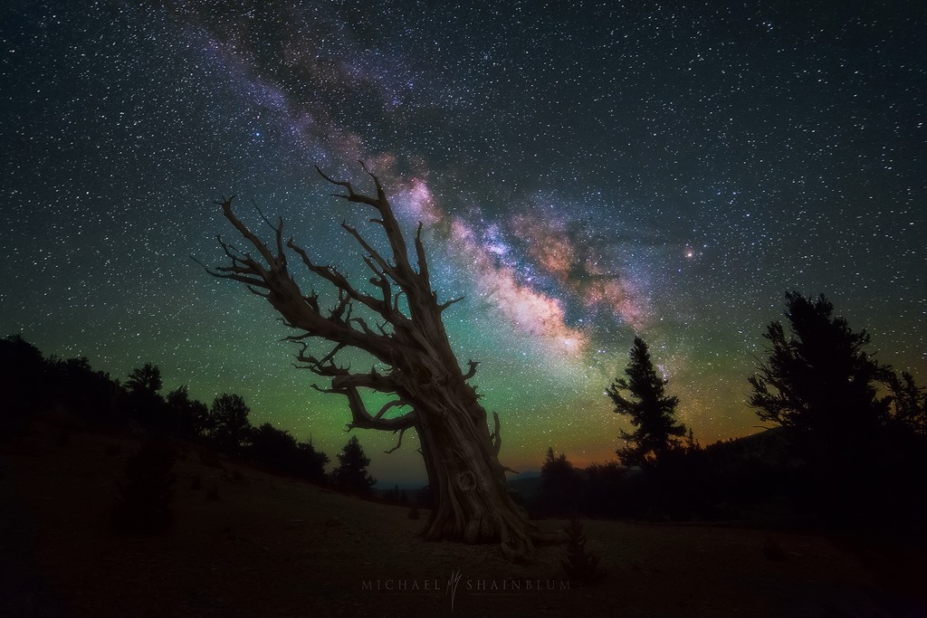 Photo Credit: Michael Shainblum Photography